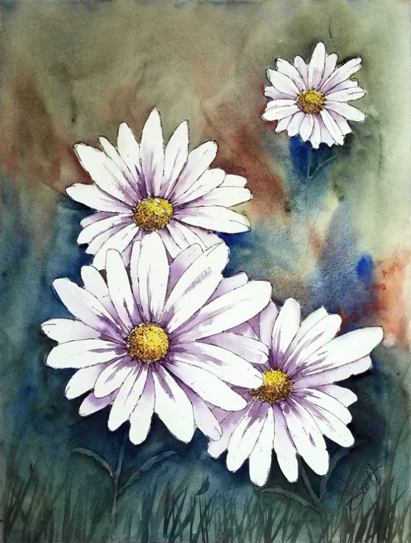 Daisies - Watercolor Line and Wash